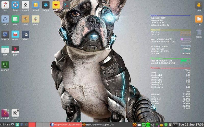 Screenshot of BionicPup64 8.0